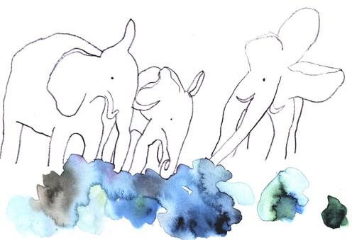 Elephants1_4