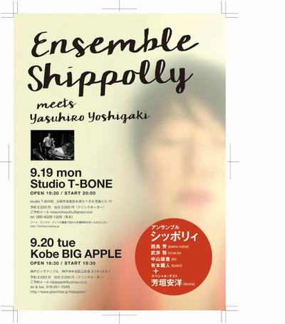 Shoppolly_9_900